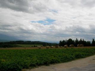 20100806-020.jpg