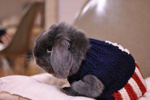 pooh sweater1