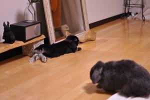 Nov05-20097.jpg