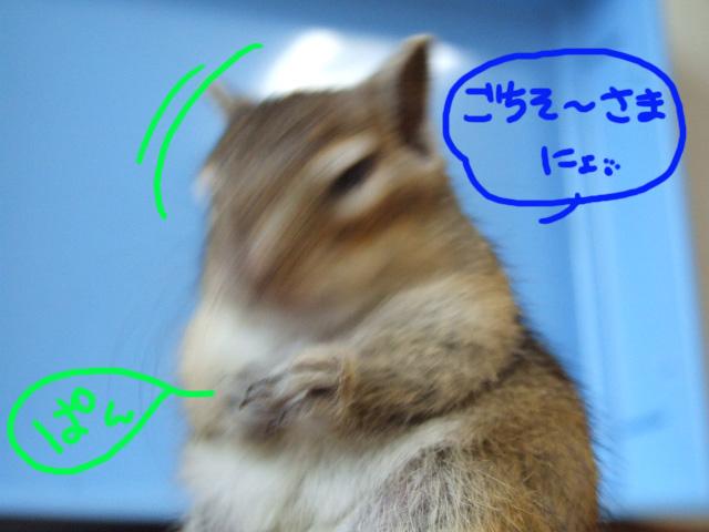 DSCF110614d3201.jpg