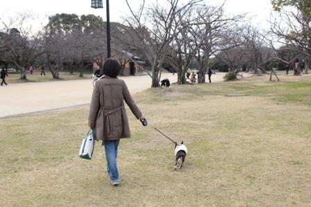 お散歩14