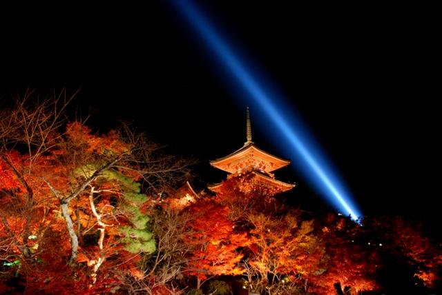 京都清水寺紅葉