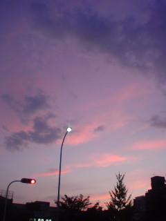 20110708194646.jpg