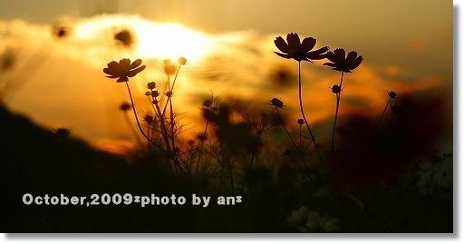 20091010_3219.jpg