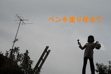 DSC_0504_20111024205453.jpg