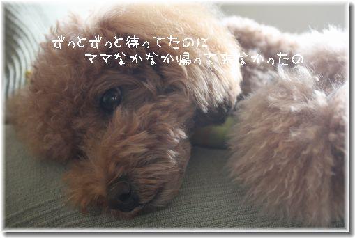 IMG_7762-1.jpg