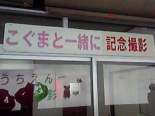 201001031343000.jpg