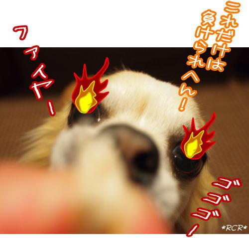 11-5 ファイヤーRay