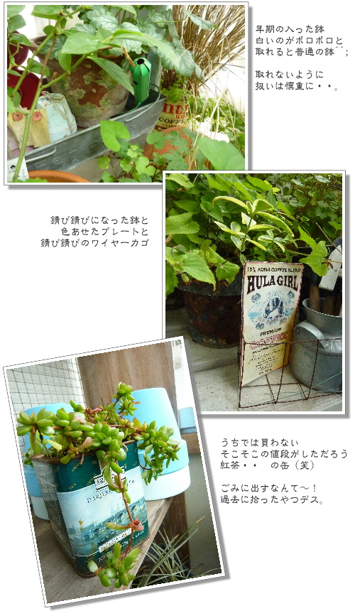 P107008711.jpg