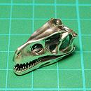 フレングエリサウルス