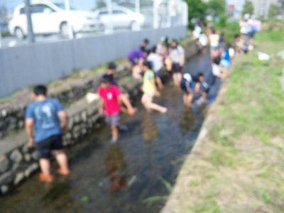 用水路に入った小学生達