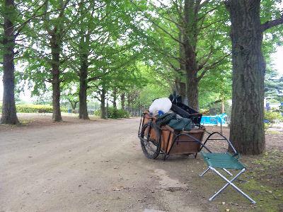 昭和記念公園の銀杏並木とリアカー