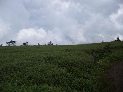 草原の中を歩いて