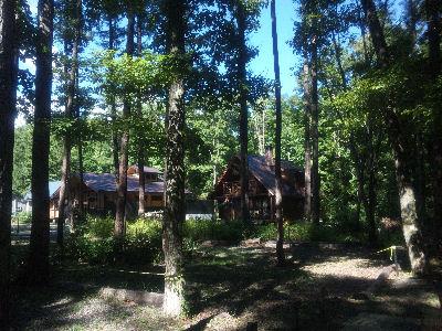 木々の中から貸別荘が