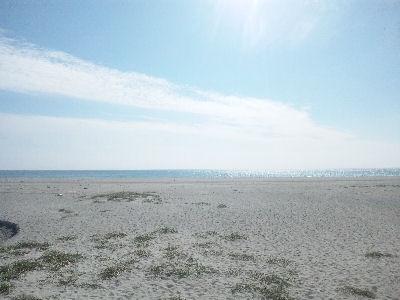 太平洋と砂丘