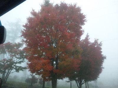 2010年10月26日の野辺山駅前の紅葉
