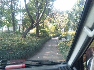 ボンゴの運転席より、中央公園の歩道を見る