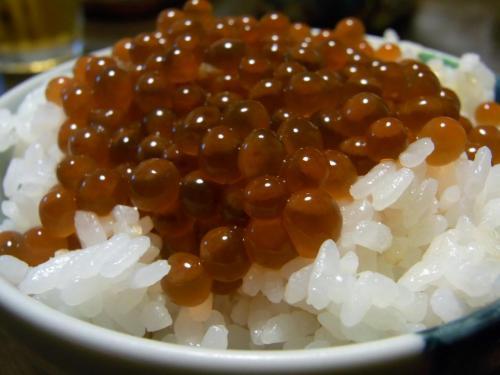 RIMG0015イクラ丼