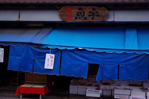 IMGP1727湘南のさかな屋