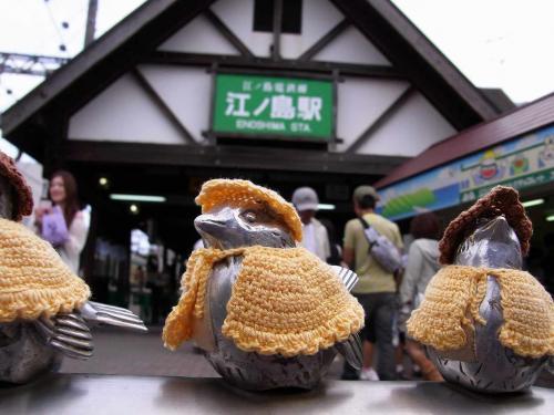 R0010497江ノ島の雀達