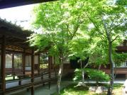 建仁寺中庭