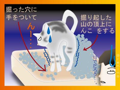 sunahori2.jpg