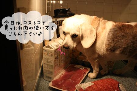 1_20091017204351.jpg