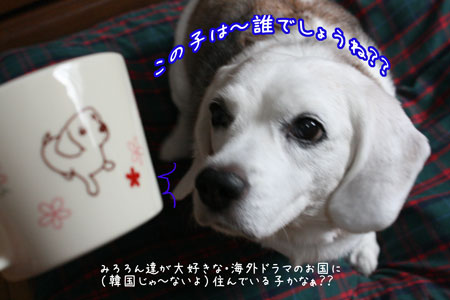 2_20090918150052.jpg