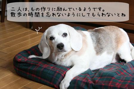 4_20090918150051.jpg