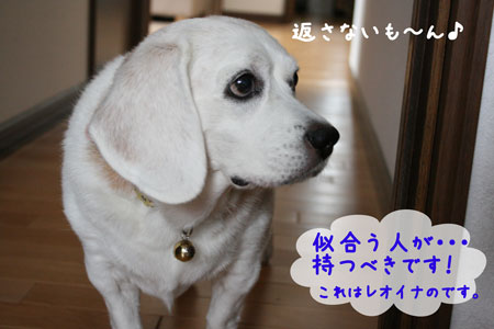 4_20090923154948.jpg
