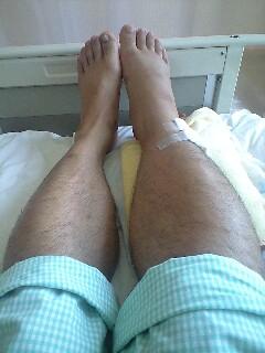 2009-08-18-マムシの被害1