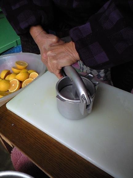 2009-12-13-カボスジュース絞り1
