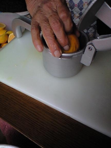 2009-12-13-カボスジュース絞り2