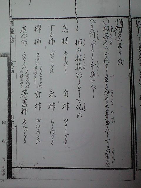 2010-01-29-国産考資料10-2