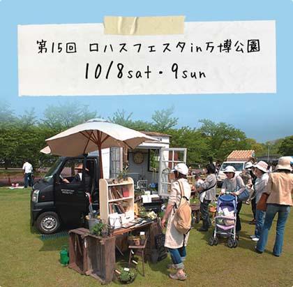 15_image.jpg