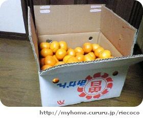 image3553095.jpg