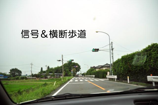 DSC_6869100602.jpg