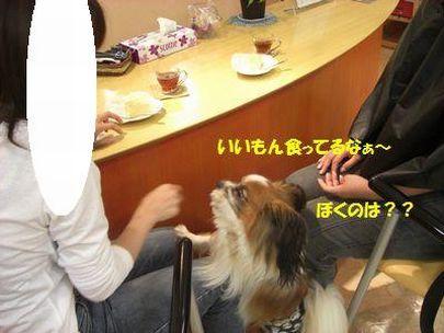 2009_0910_185713-CIMG3568.jpg
