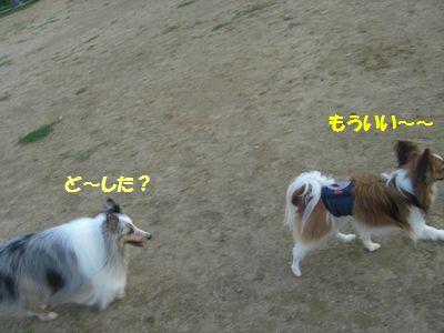 2009_0921_165752-CIMG3911.jpg