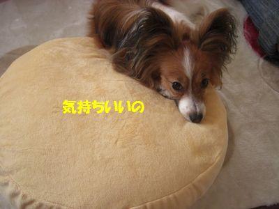 2009_0928_144440-CIMG4012.jpg