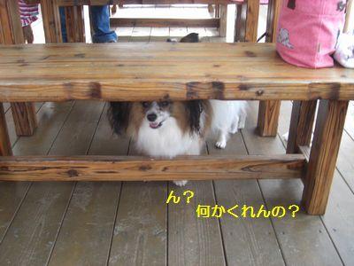 2009_1005_154900-CIMG4214.jpg