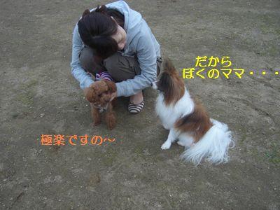 2009_1005_171541-CIMG4297.jpg