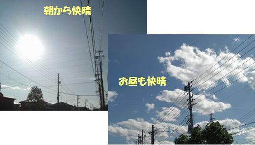 2009_1015_080659-CIMG4625.jpg