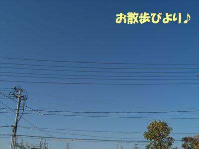 2009_1023_080904-CIMG4789.jpg