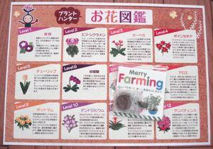 栽培キットとお花図鑑