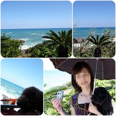 2009092110.jpg