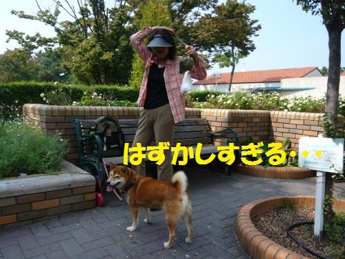 051_20111016204536.jpg