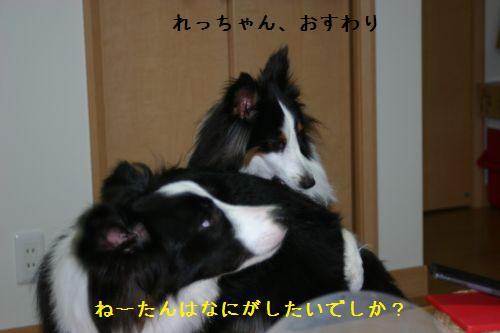 IMG_0201_20091211194854.jpg