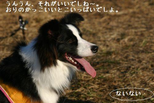 IMG_0499.jpg