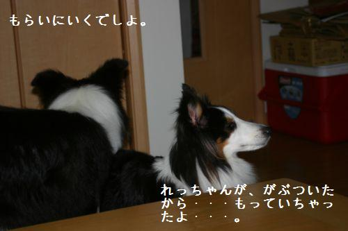 IMG_0647.jpg